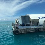 Sunlover Reef Cruises Foto