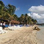 Tropicante beachfront