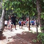 Bild från Kila Eco Adventure Park