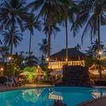 Photo of Jungle Village  Restaurant