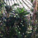 Photo of Botanical Gardens (Botanisk Have)