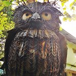 A majestic Owl sculpture greets you at the sanctuary!