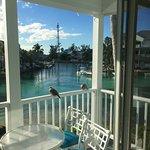 Birds at Play off Balcony