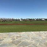 Some polo action