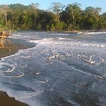 rio claro river, sirena around