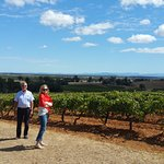 Фотография Wine Country Tours