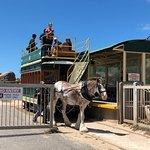 Foto de Victor Harbor Horse Drawn Tram