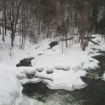 The Mill Creek Winter Beauty