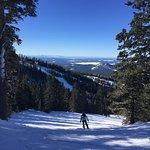 Sunny day at Arizona Snowbowl near Flagstaff, AZ.