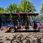 Buggy shuttle within the resorts.