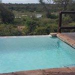 Bushwise Safaris Image