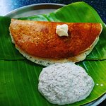 The MYLARI DOSA