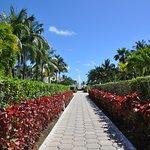 Foto de Dreams Tulum Resort & Spa