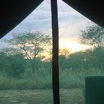 Photo of Asanja Africa