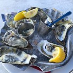 Oysters... yum....