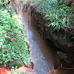 il rivolo della sorgente che si getta nel fosso