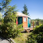 Carmanah Yurt and Deck