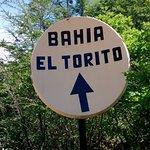 Bahia Torito
