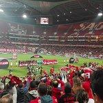 Foto de Estadio do Sport Lisboa e Benfica