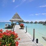 Photo of InterContinental Bora Bora Le Moana Resort