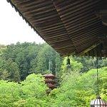 花と新緑の長谷寺(2017年5月6日)