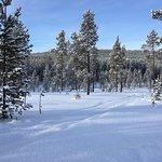 Valokuva: Kamisak Husky and Horse Expeditions - Day Tours