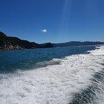 Foto de Abel Tasman Coast Track