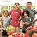 Explore local farm markets