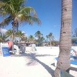 Higgs Beach Foto