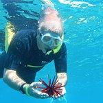 Ken holding a sea urchin
