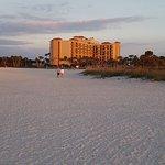 Foto de Sheraton Sand Key Resort