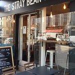 Zdjęcie The Stray Bean