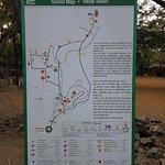 Photo of Kanheri Caves