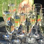 Champagne divot stomp!