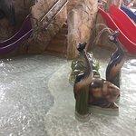 Kalahari Waterparks