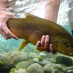صورة فوتوغرافية لـ Bariloche Fly Fishing