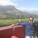 Bilde fra Wine Escapes - Exclusive Cellar & Vineyard Tours