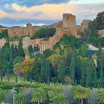 Alcazaba and gardens below.
