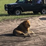 Valokuva: F. King Tours and Safaris - Day Tours