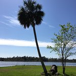 Crystal River Archaeological State Park Foto