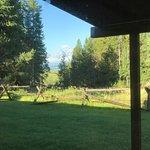 Jackson Lake Lodge Foto