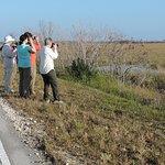 Naturalist Adventure Tour to Everglades National Park, 2018