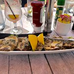 """Famous Oysters """"Turtlefeller"""""""