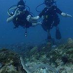 Photo of Happy Divers Aruba