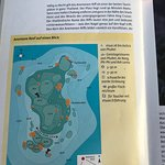 Photo of Dive Asia - SCUBA and Snorkeling Day Trips and PADI Courses
