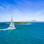 Sailaway Low Isles from Port Douglas