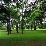 Cornwall Park Foto
