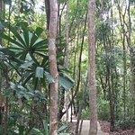 Photo of Nirwana Gardens - Banyu Biru Villa