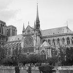 Paris City Transfer صورة فوتوغرافية