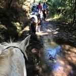 Bilde fra Quinta do Riacho